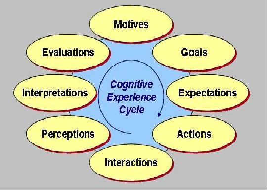 Cognitive Experience Cycle